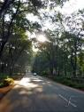 Shining road