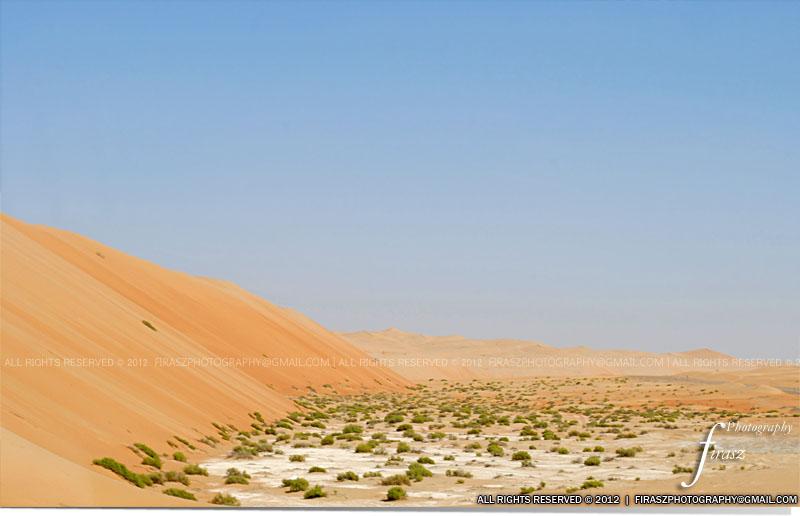 Deserts of Liwa2