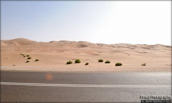 Arid Sands