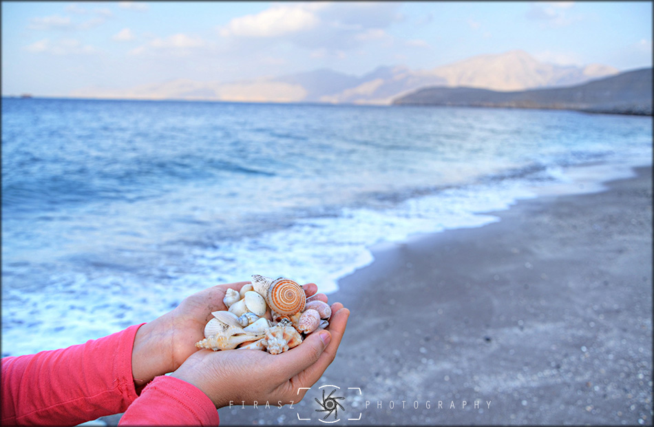 Handful of Seashells1