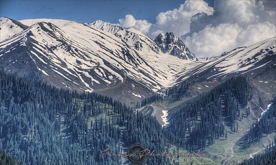 Gulmarg Views2