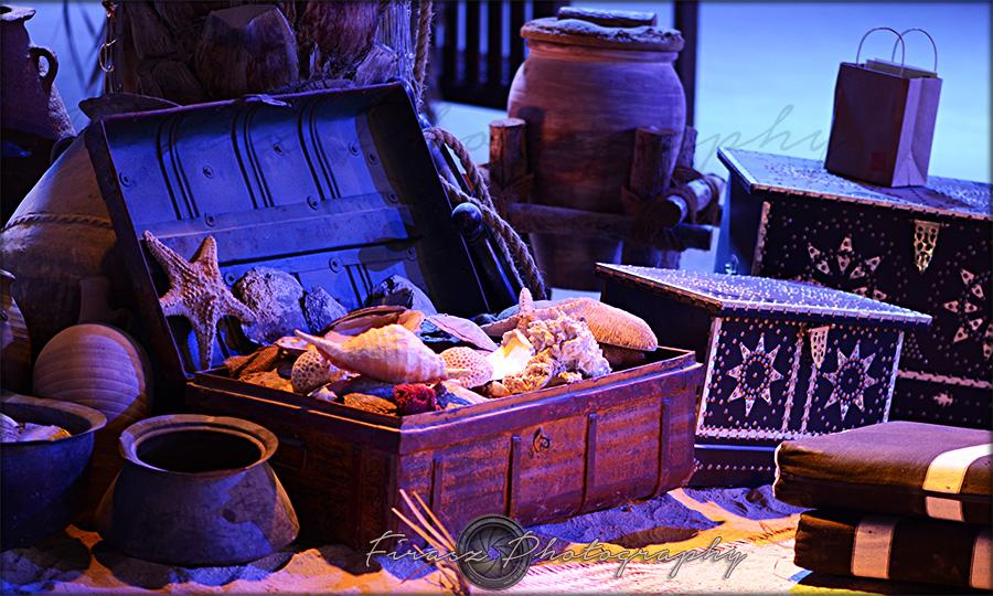 Sea Treasures5