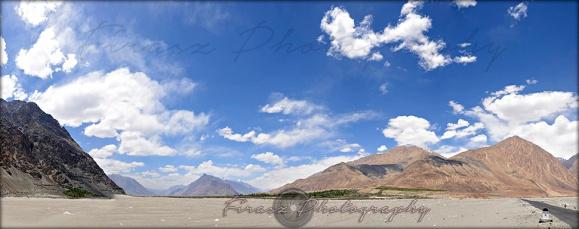 Highland Desert