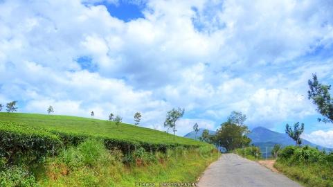 Novel Roads2