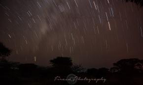 Star Bands4_Amboseli