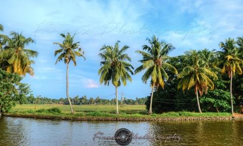 Backwaters4