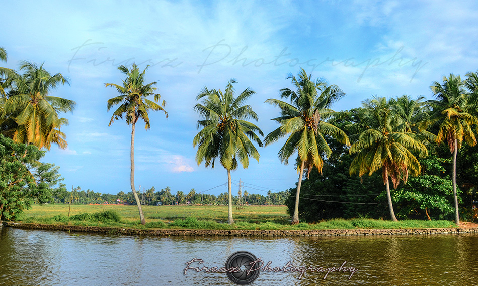 Backwaters4